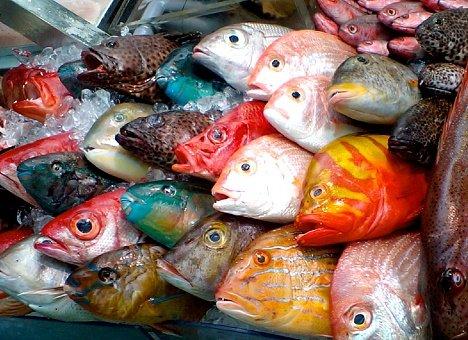 рынок рыбы